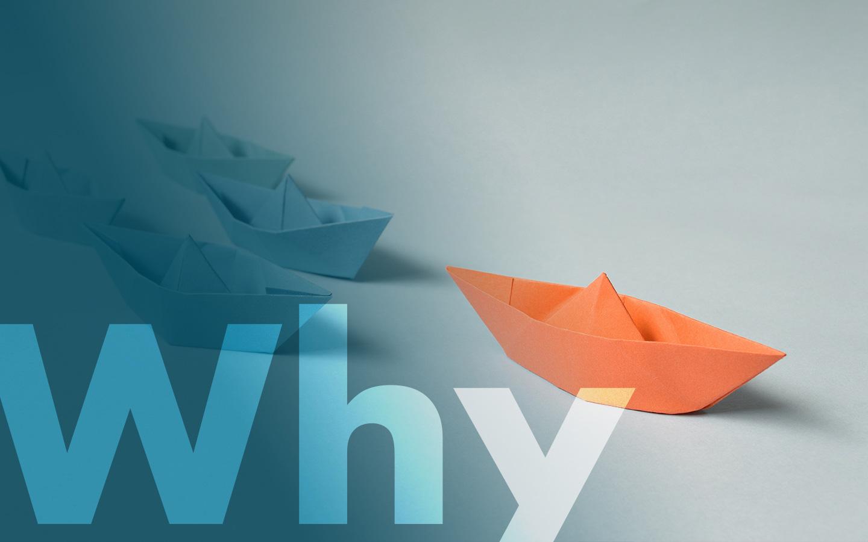 tv-ledelse-why